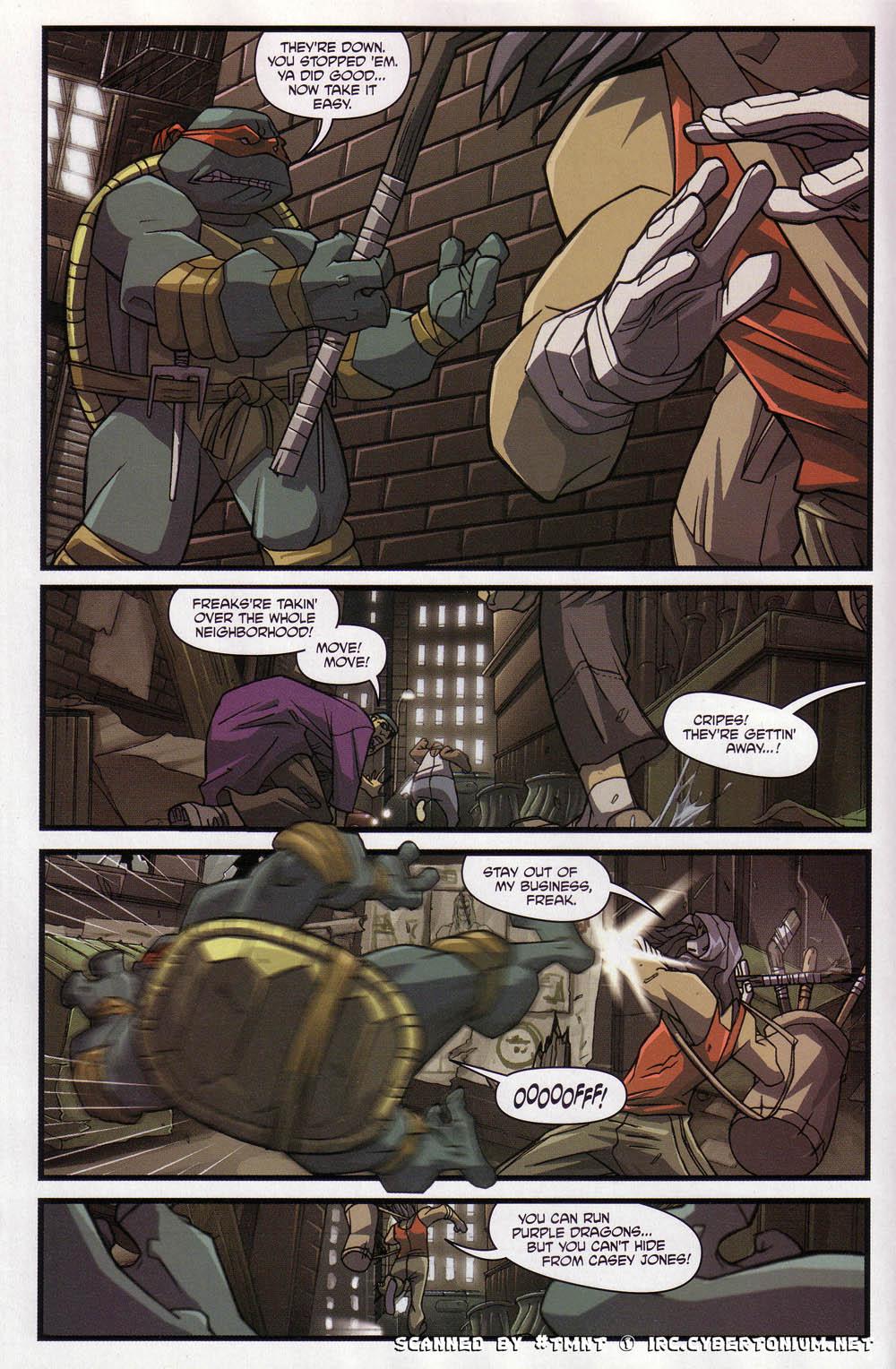 Teenage Mutant Ninja Turtles (2003) issue 4 - Page 10