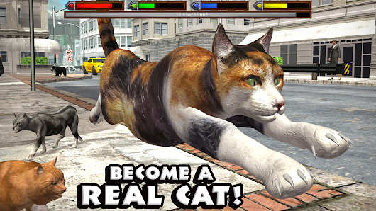 APK PRO: Ultimate Cat Simulator APK (FULL)