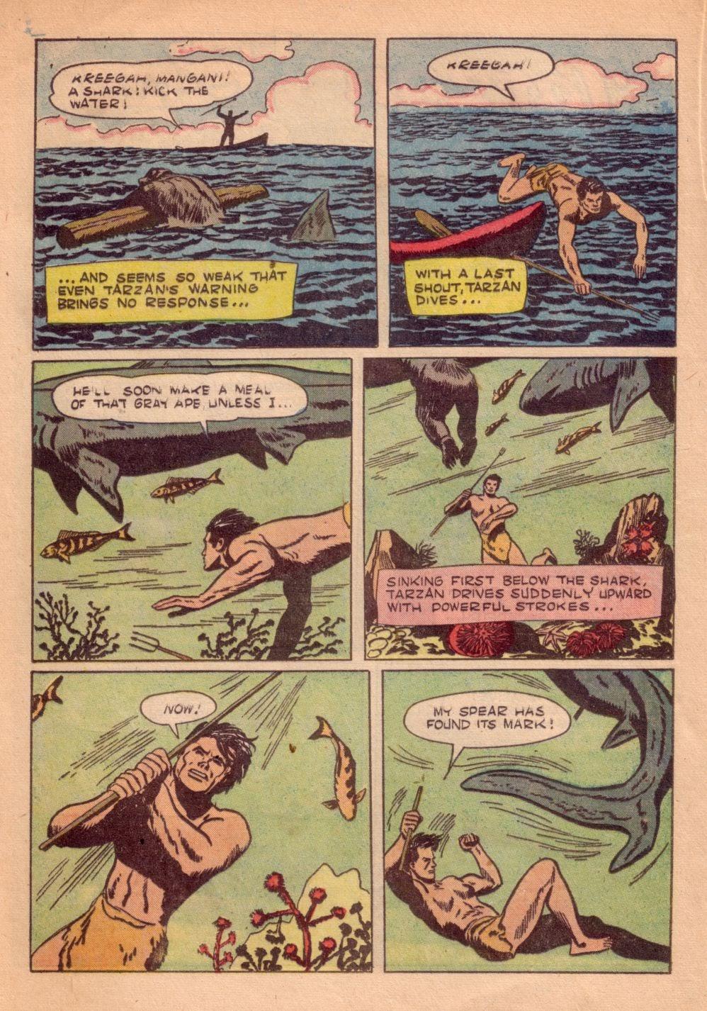 Tarzan (1948) issue 55 - Page 28