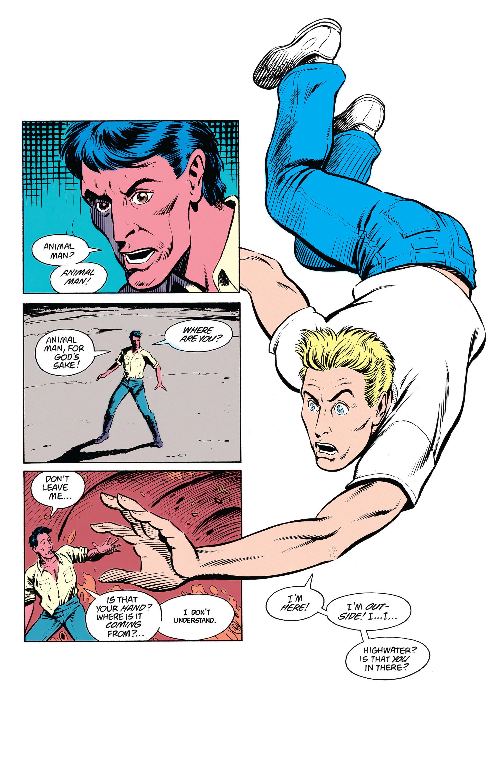Read online Animal Man (1988) comic -  Issue #19 - 18