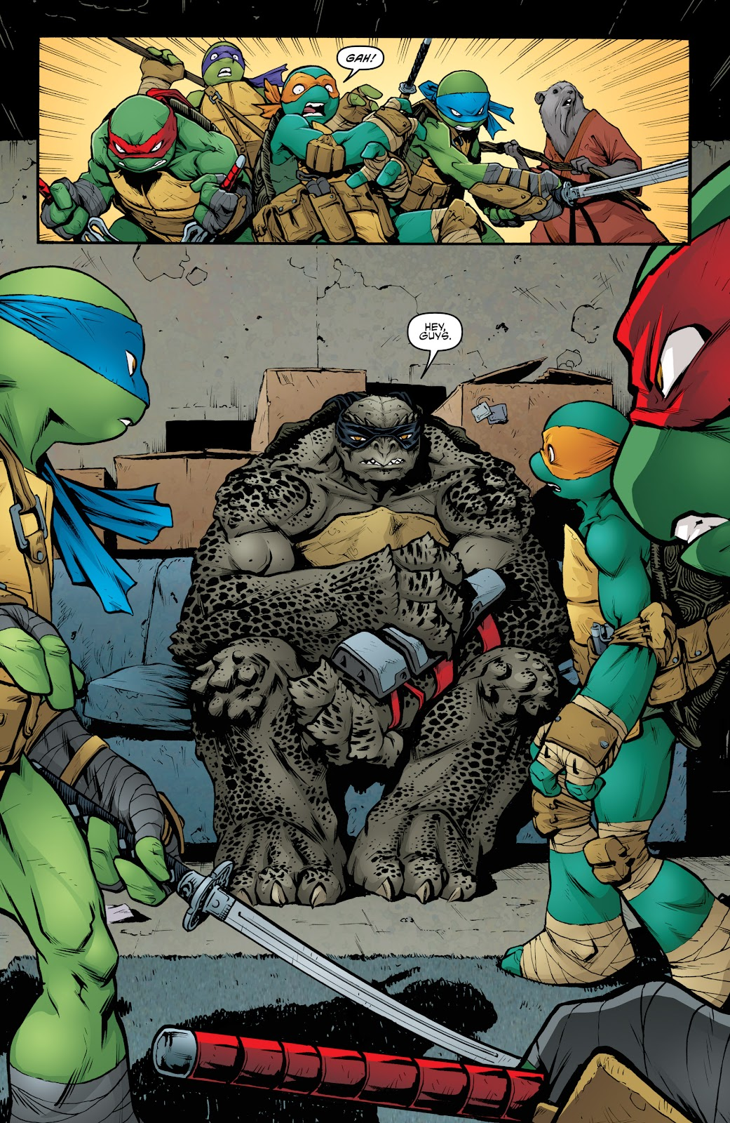 Read online Teenage Mutant Ninja Turtles: The IDW Collection comic -  Issue # TPB 5 (Part 2) - 4