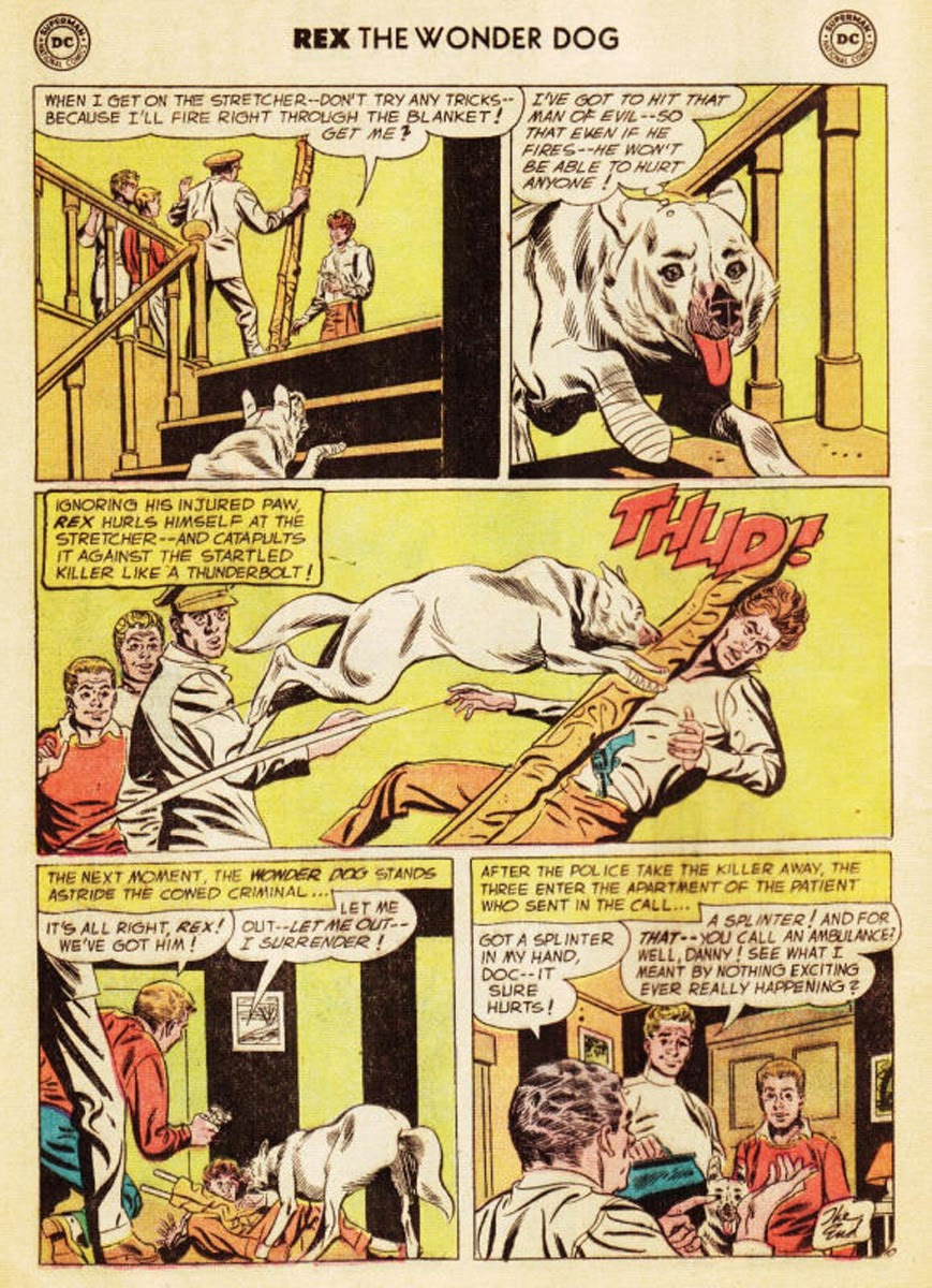 The Adventures of Rex the Wonder Dog issue 35 - Page 11