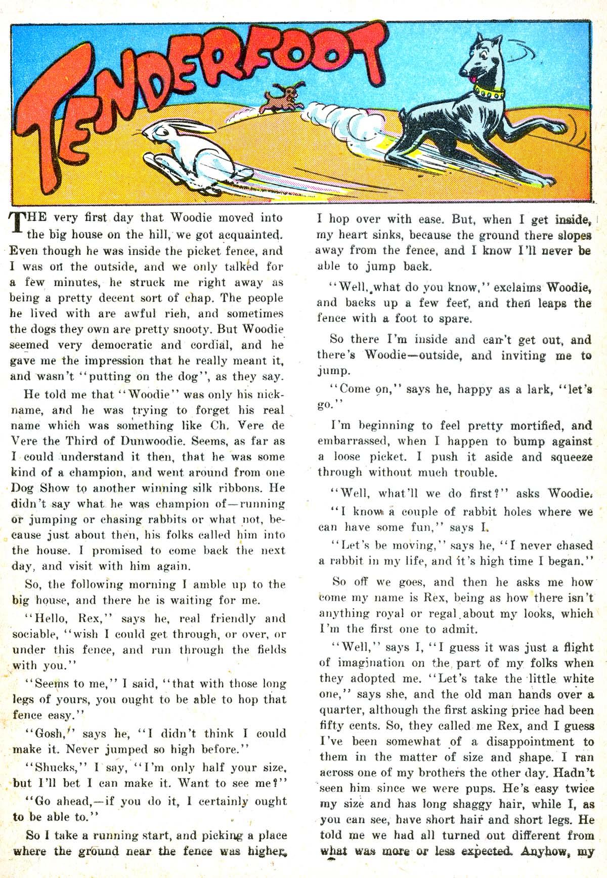 Read online Animal Antics comic -  Issue #6 - 41