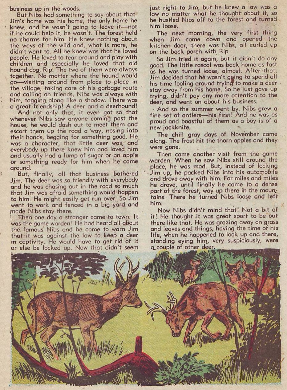 Read online Animal Comics comic -  Issue #27 - 39