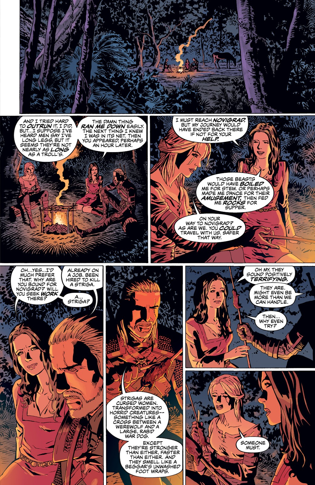 Read online The Witcher Omnibus comic -  Issue # TPB (Part 4) - 4