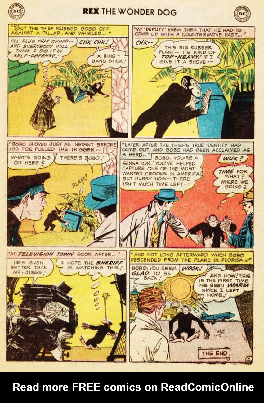 The Adventures of Rex the Wonder Dog issue 35 - Page 17