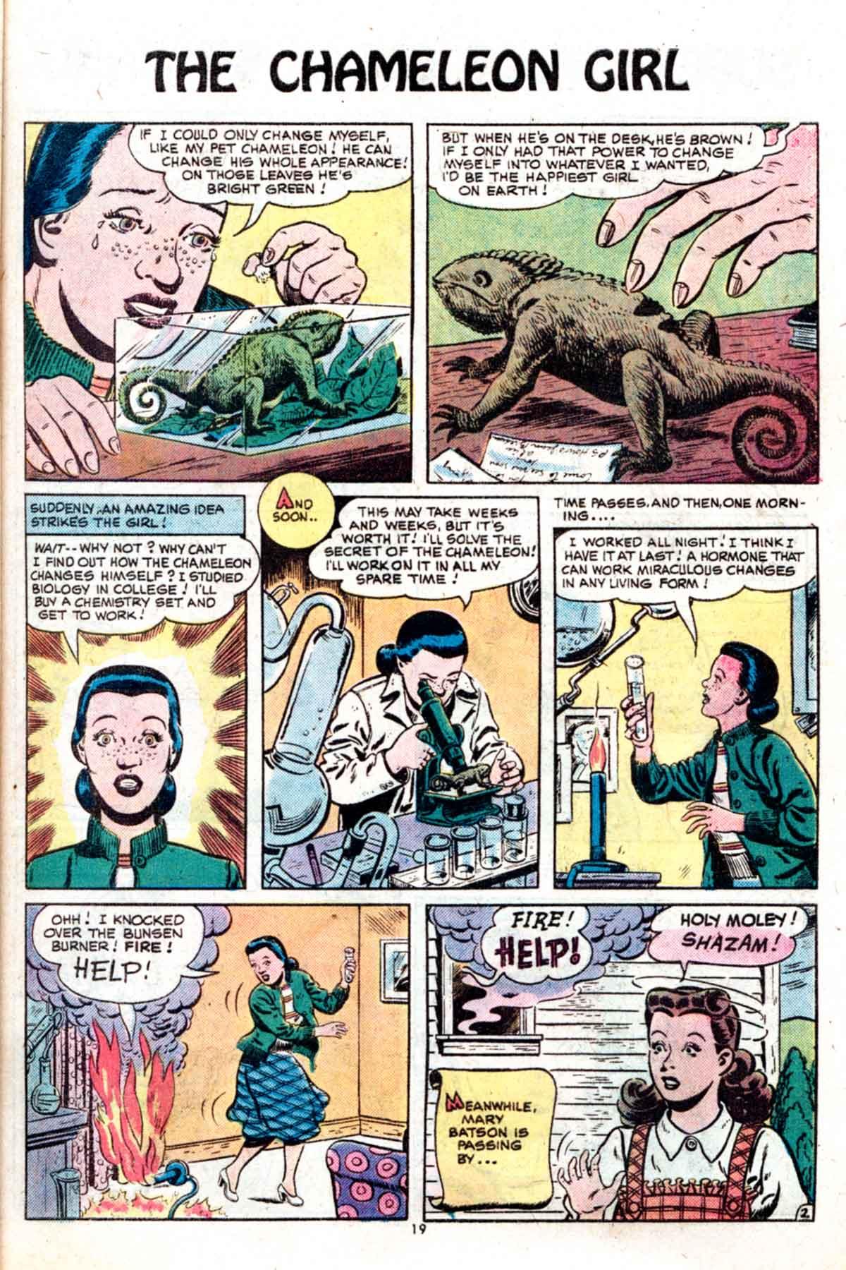 Read online Shazam! (1973) comic -  Issue #15 - 19