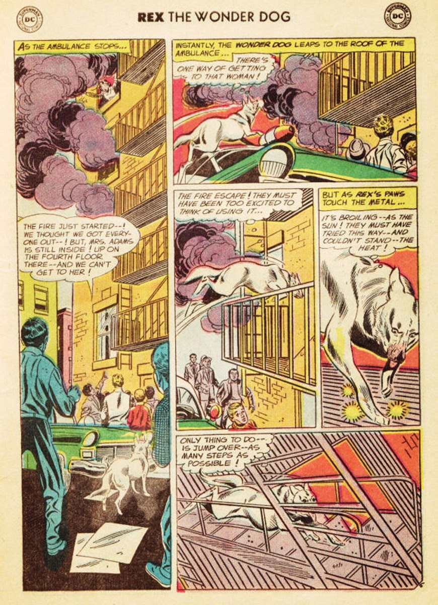 The Adventures of Rex the Wonder Dog issue 35 - Page 6