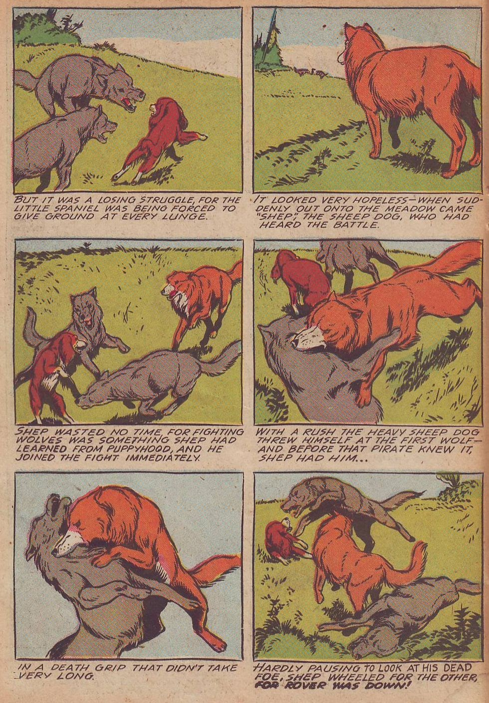 Read online Animal Comics comic -  Issue #21 - 26
