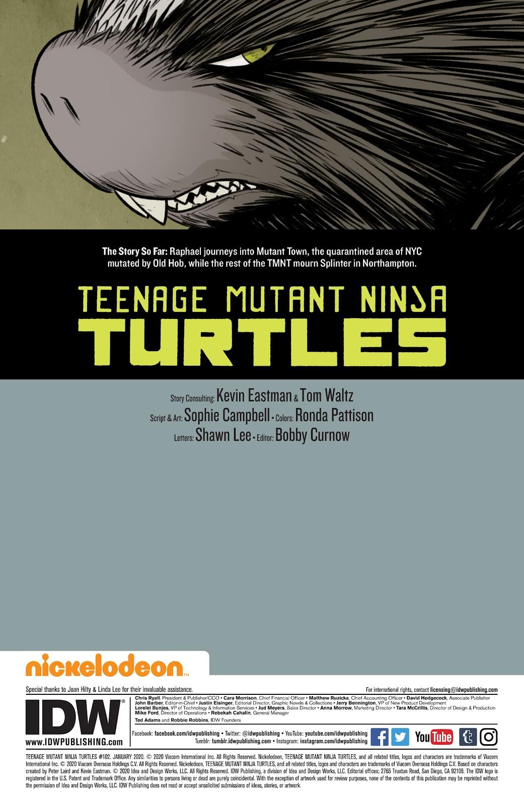 Read online Teenage Mutant Ninja Turtles (2011) comic -  Issue #102 - 2