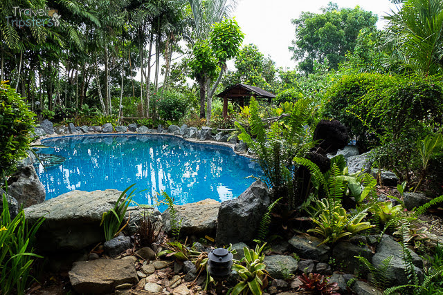 cintai coritos garden swimming pool