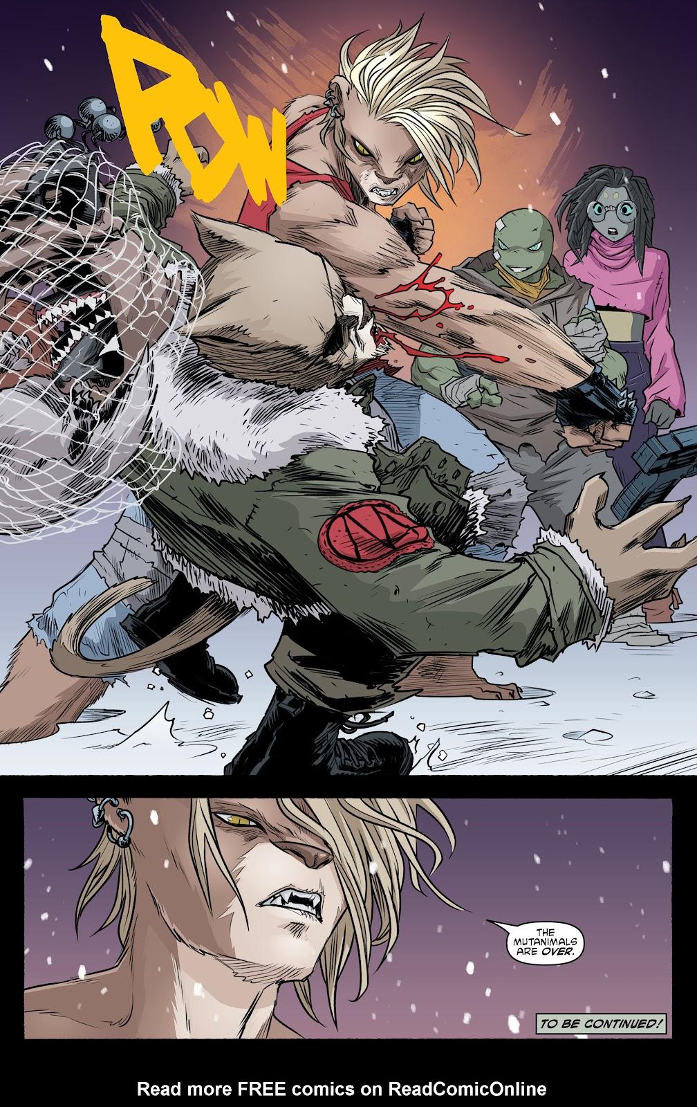 Read online Teenage Mutant Ninja Turtles (2011) comic -  Issue #103 - 22