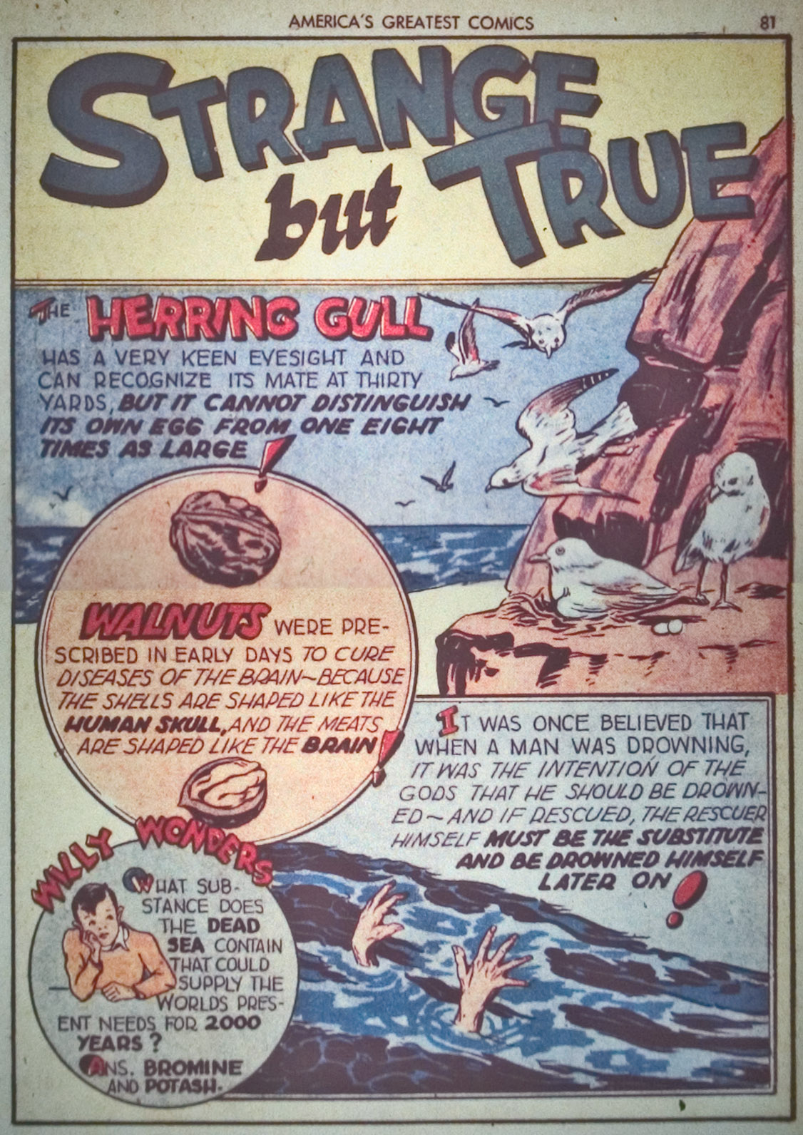 Read online America's Greatest Comics comic -  Issue #1 - 84