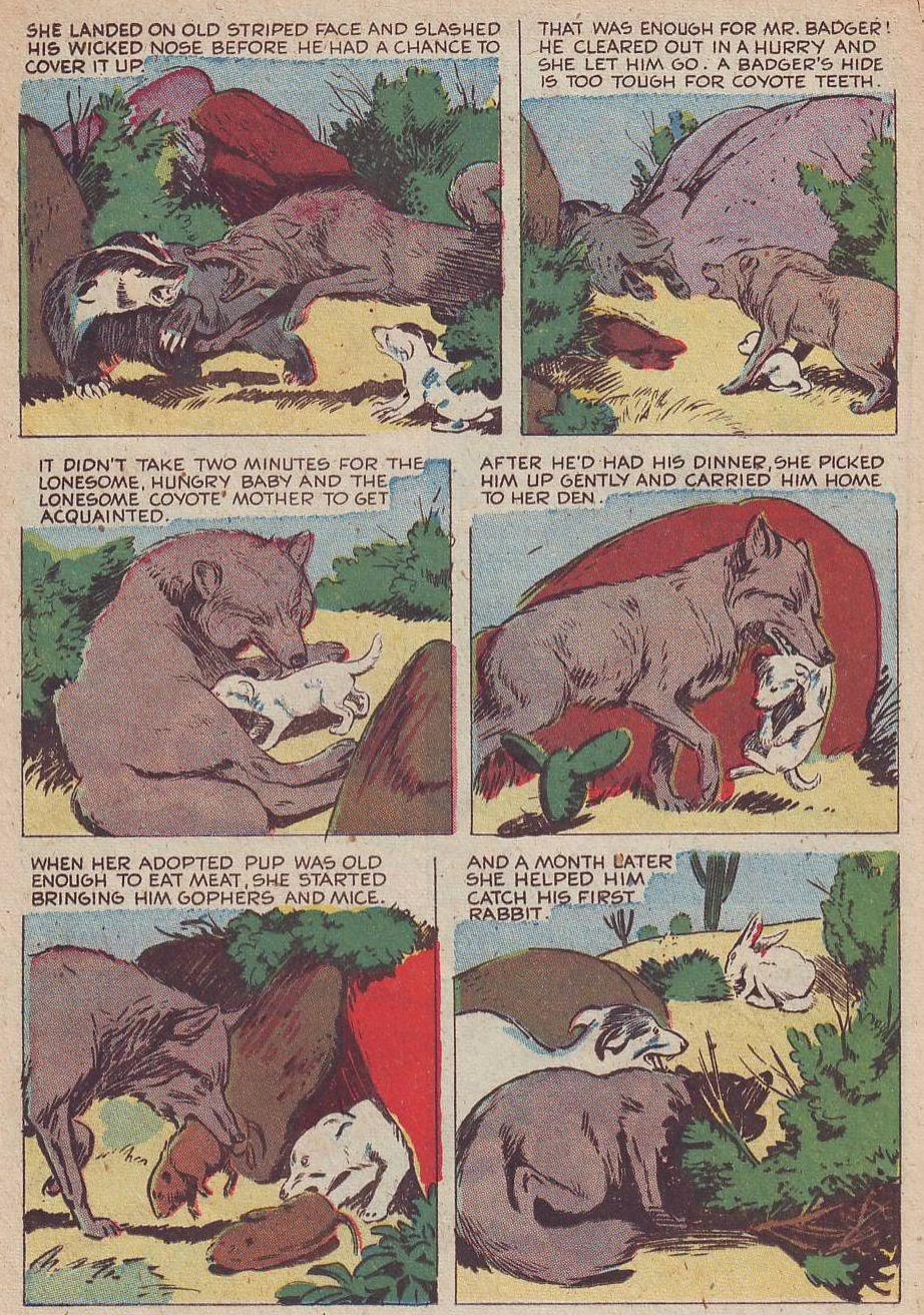 Read online Animal Comics comic -  Issue #30 - 28