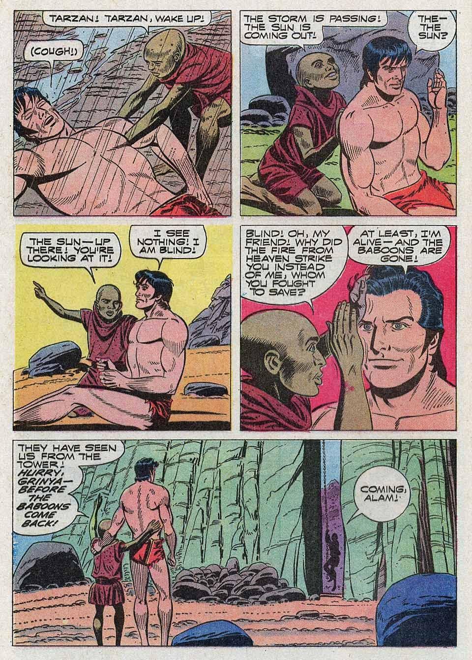 Tarzan (1962) issue 204 - Page 12