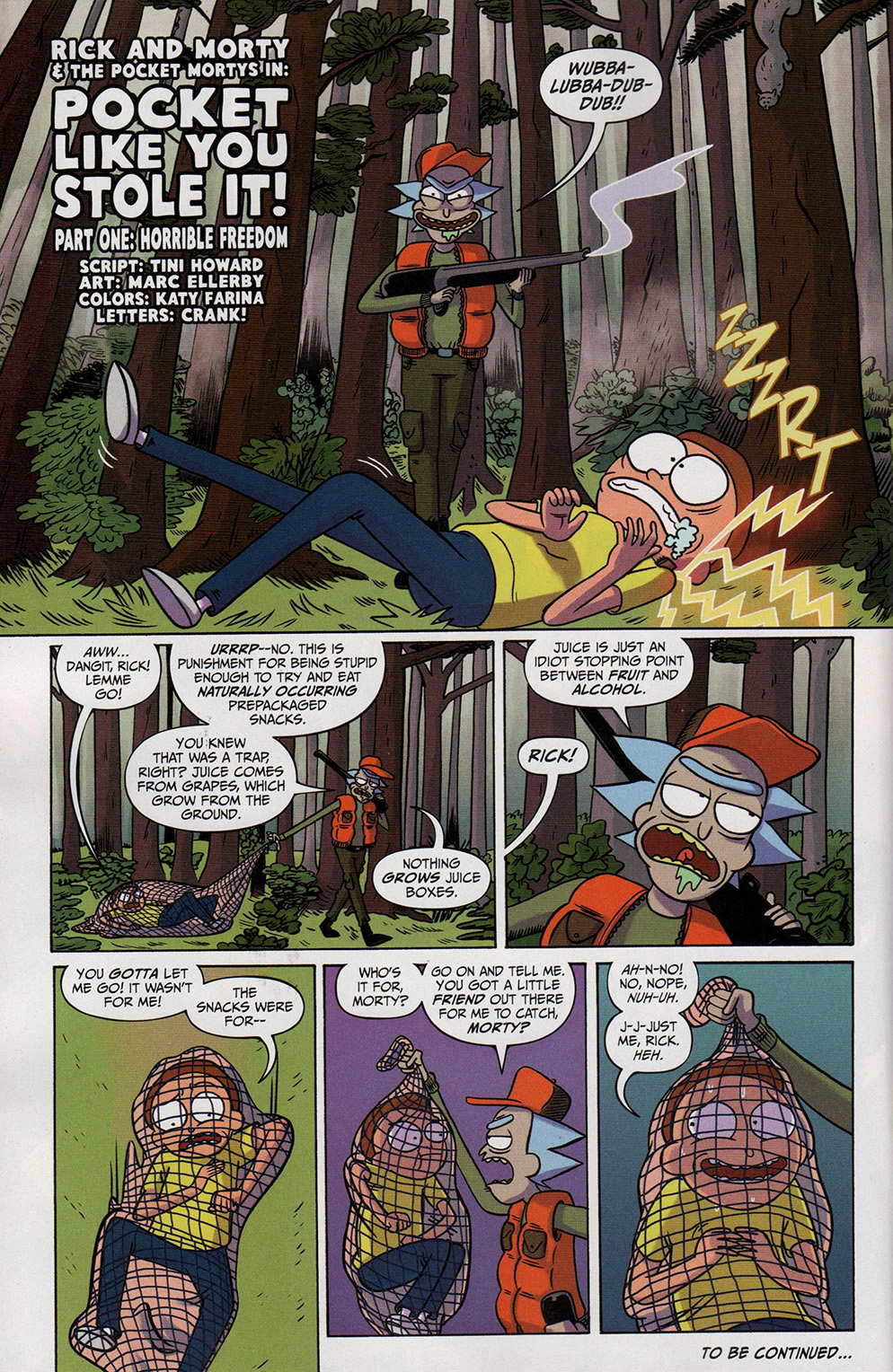 Read online Free Comic Book Day 2017 comic -  Issue # Rick and Morty - 24