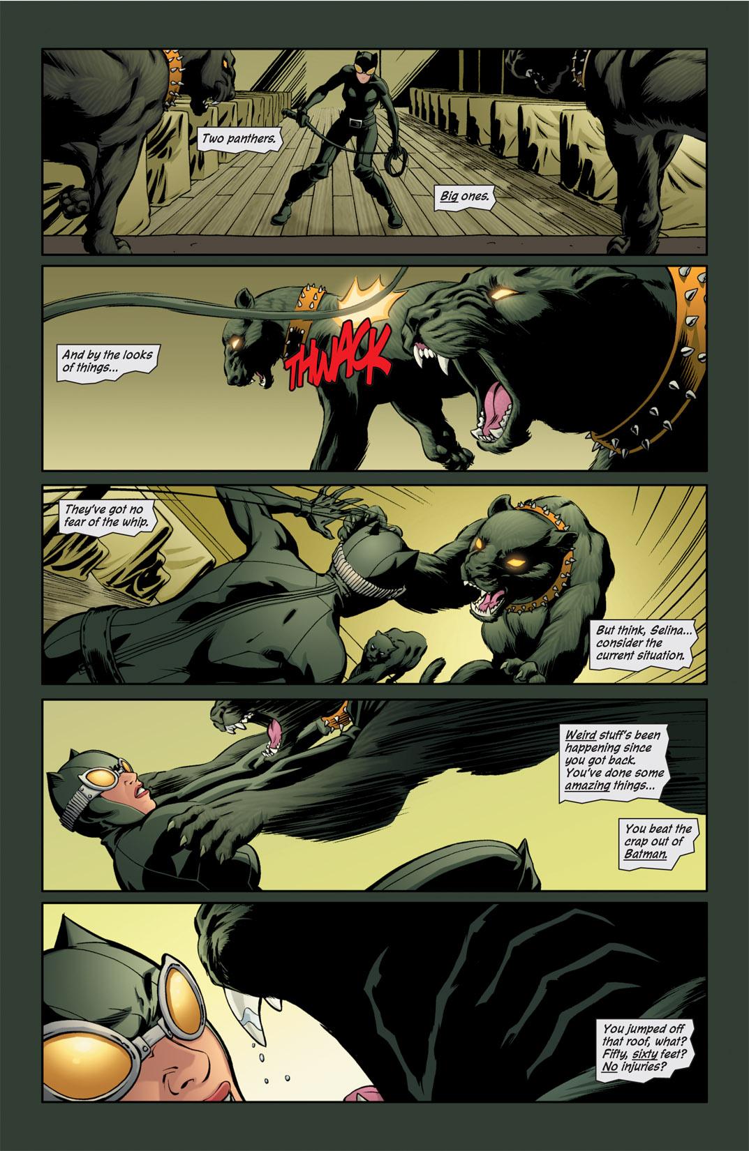 Catwoman (2002) #76 #76 - English 12