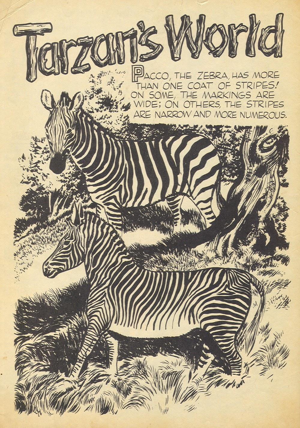 Tarzan (1948) issue 60 - Page 2