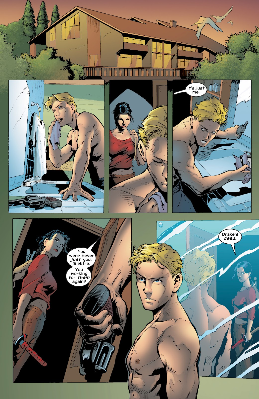 Read online Elektra (2001) comic -  Issue # _TPB Elektra by Greg Rucka Ultimate Collection (Part 4) - 47