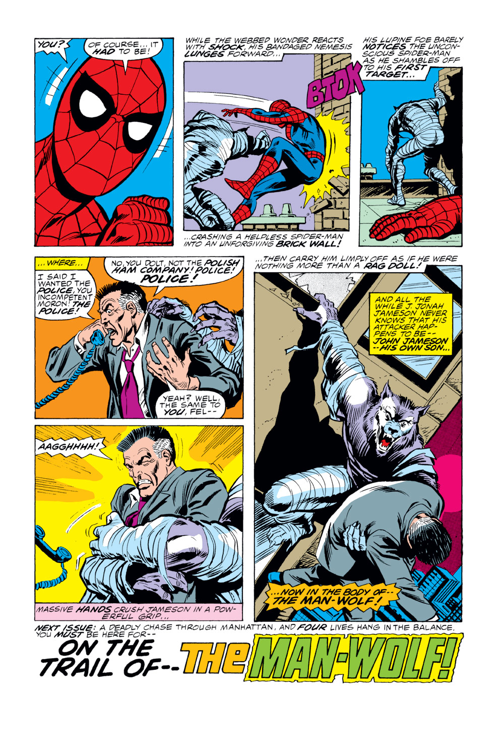 The Amazing Spider-Man (1963) 189 Page 17