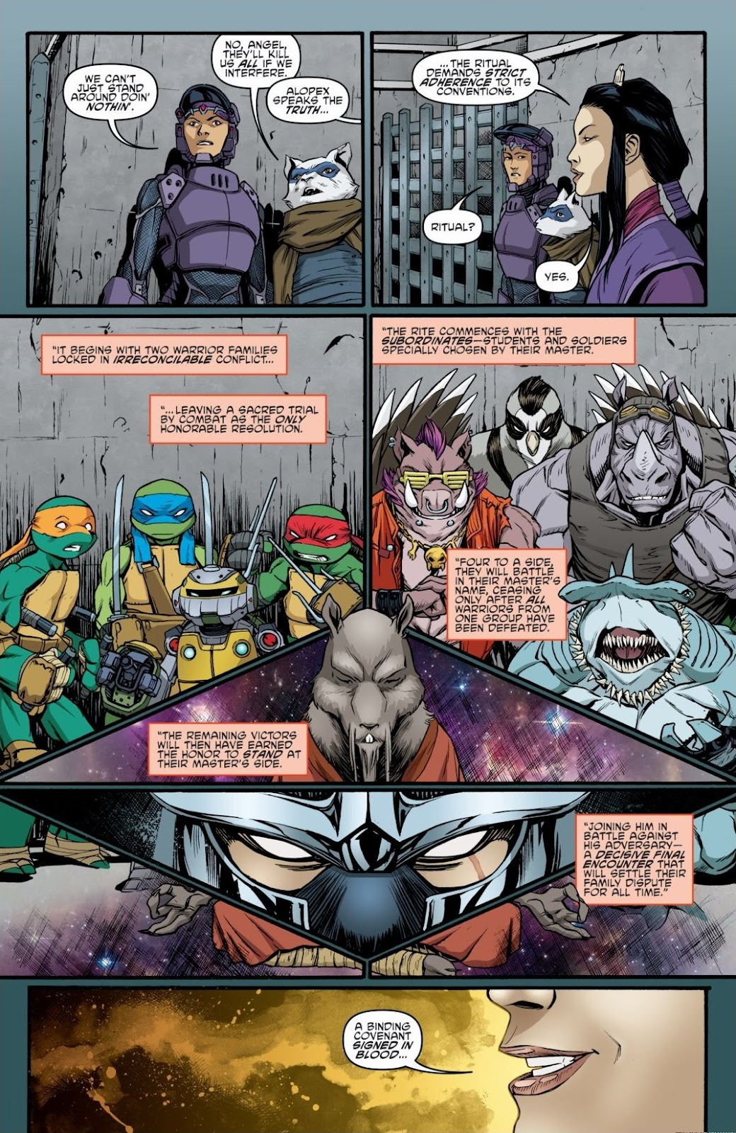 Read online Teenage Mutant Ninja Turtles: The IDW Collection comic -  Issue # TPB 6 (Part 3) - 28