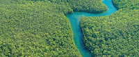 Aquila Waldinvest Fonds Brasilien Regenwald iii 3