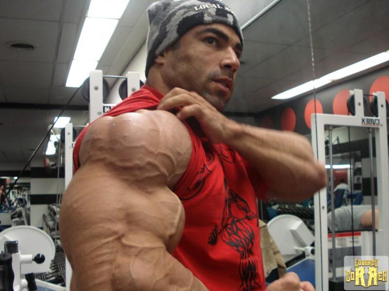 Eduardo Correa  Bodybuildingcom Forums