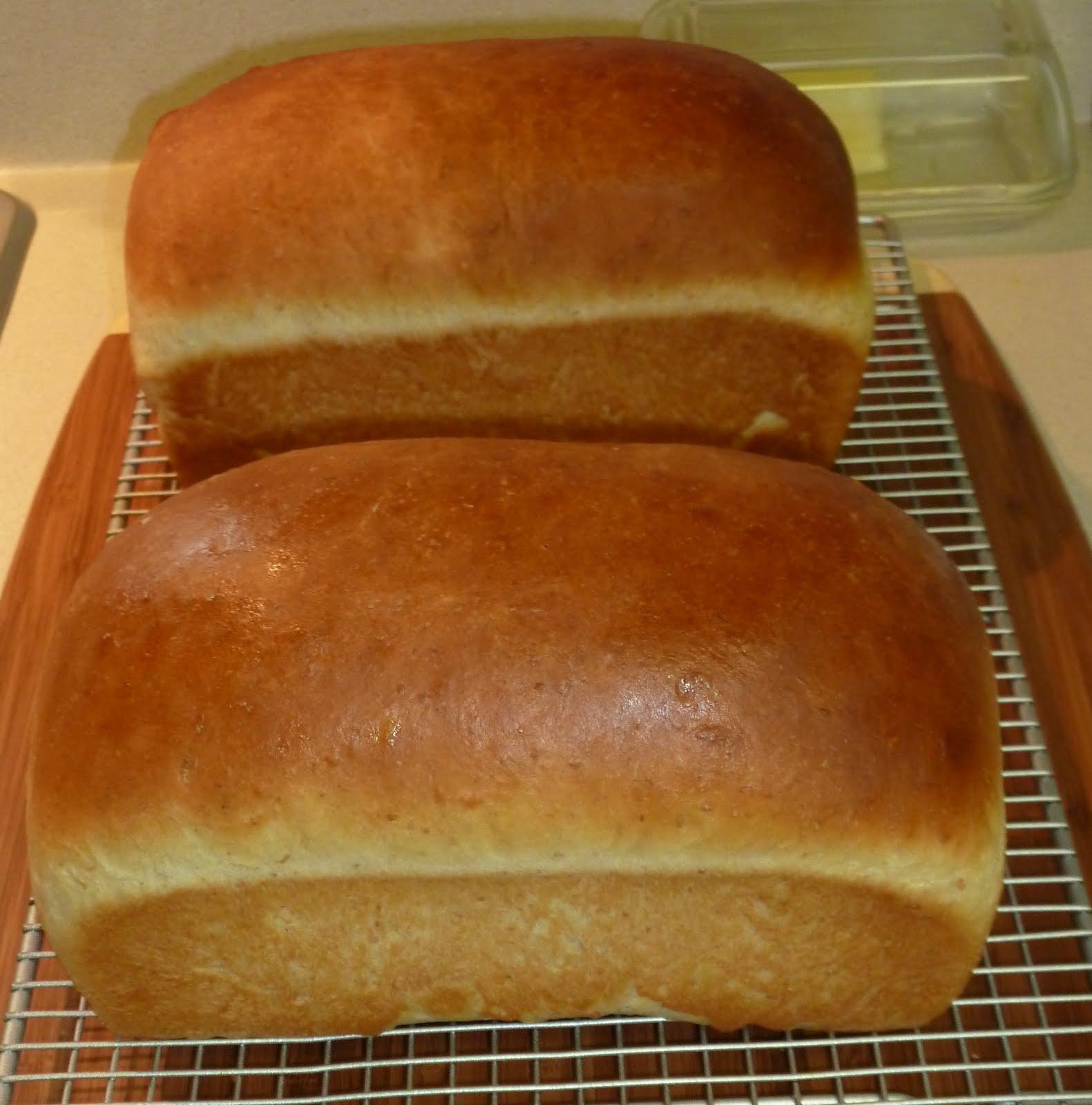 The Iowa Housewife: Basic Potato Yeast Bread