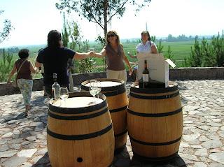 Ruta del vino, Chile, vuelta al mundo, round the world, La vuelta al mundo de Asun y Ricardo