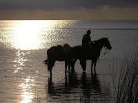 río La Plata, Uruguay, entrevista la vuelta al mundo.net, blog la vuelta al mundo.net,vuelta al mundo, round the world, información viajes, consejos, fotos, guía, diario, excursiones