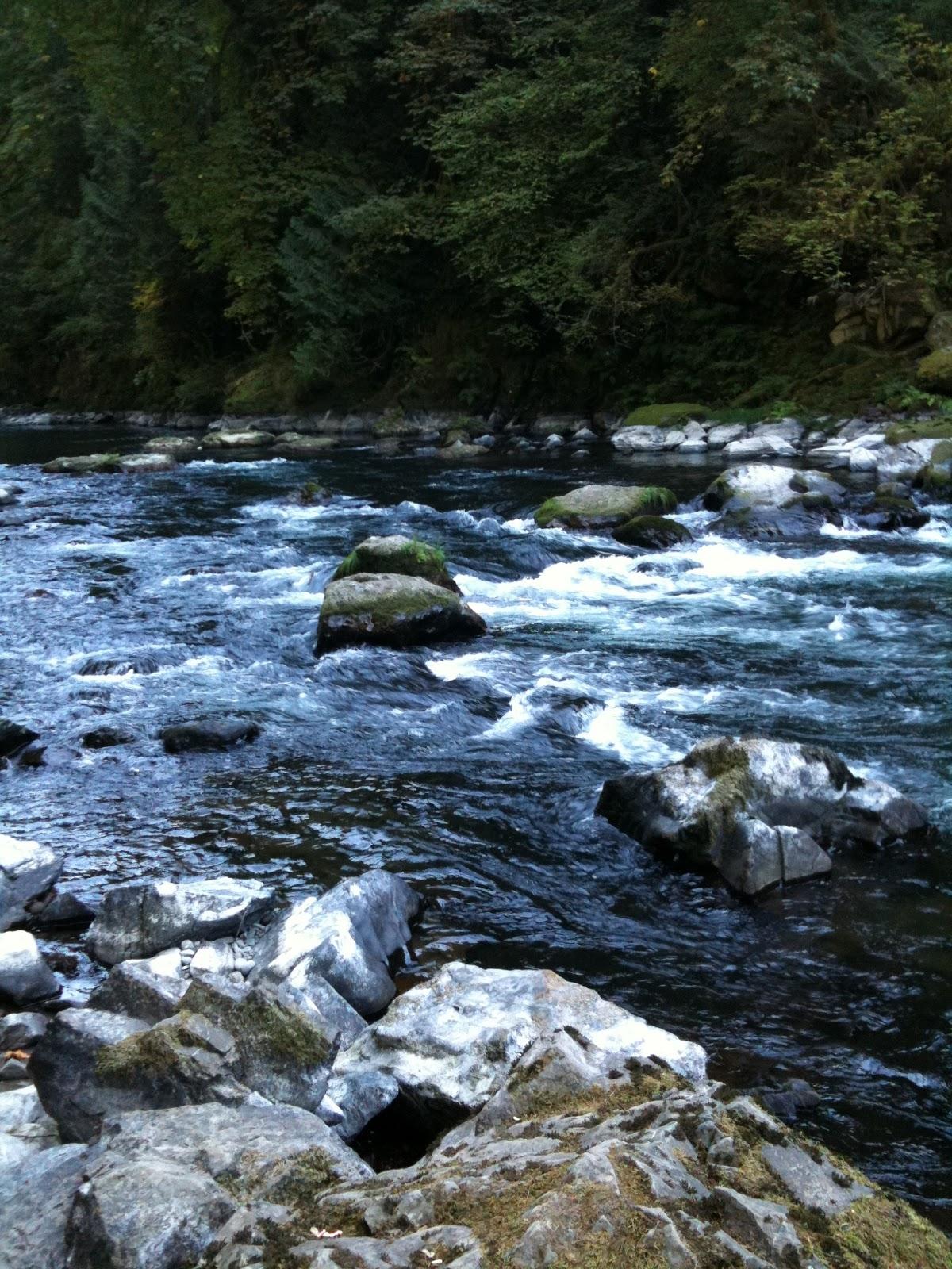 Fishing In Washington State Is Amazing