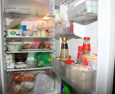 https://i1.wp.com/2.bp.blogspot.com/_-CtryyZ7egs/SjE2UXmlIaI/AAAAAAAACN8/TZ7hsD3kGZY/s400/fridge0001.jpg