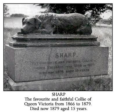 Sharp Memorial Queen Victoria border collie