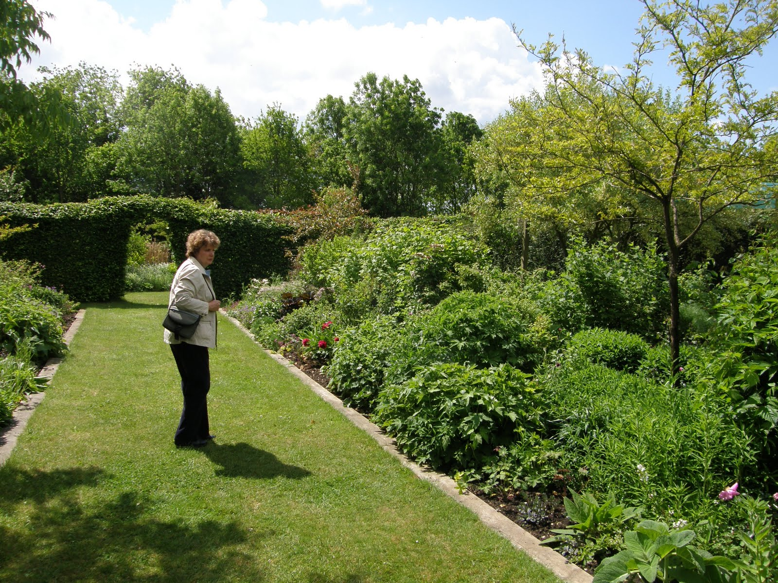 Walnut Tree Garden Nursery
