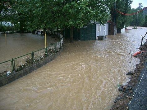 El carrejo de Gorostiza inundado