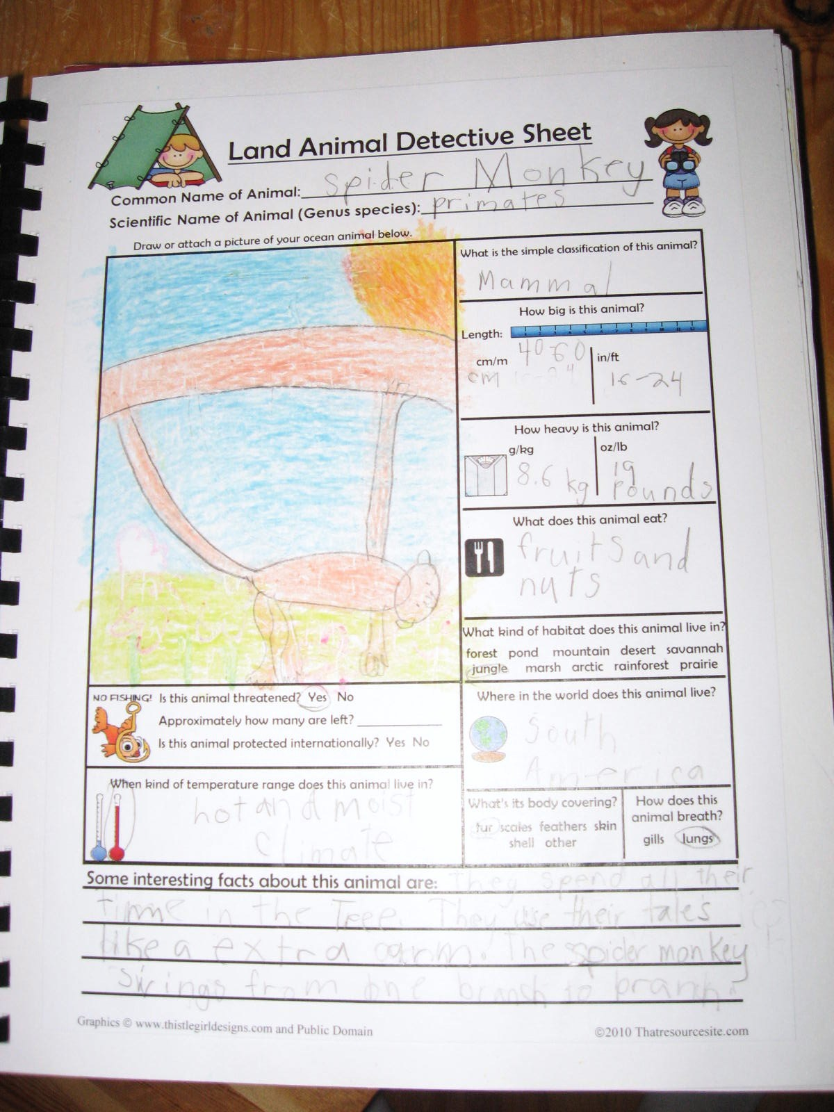 That Resource Site New Science Detective Sheet For Kids