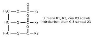 karakteristik lipid