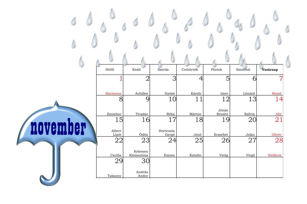 2010 decemberi naptár Édes kis semmiségek 2.0: Novemberi naptár 2010 decemberi naptár
