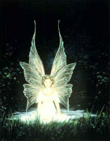 light fairies wallpaper - photo #36