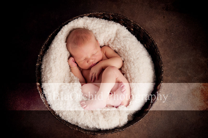 Working with their family and we cant wait until little miss caroline comes to see us again here are a few pictures from her newborn session enjoy