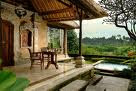 hotel in ubud, holiday in ubud, monkey forest ubud