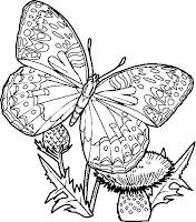 Dibujo De Mariposas Para Imprimir Y Colorear Lámina Para Colorear