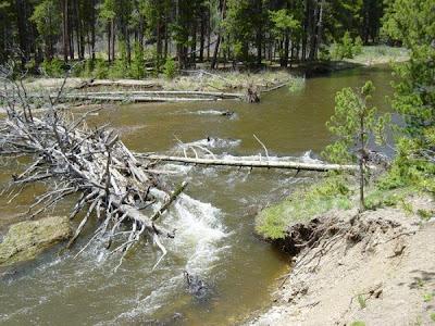 Valley Loop Trail (June 2003)