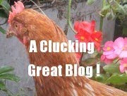 Great Blog Award