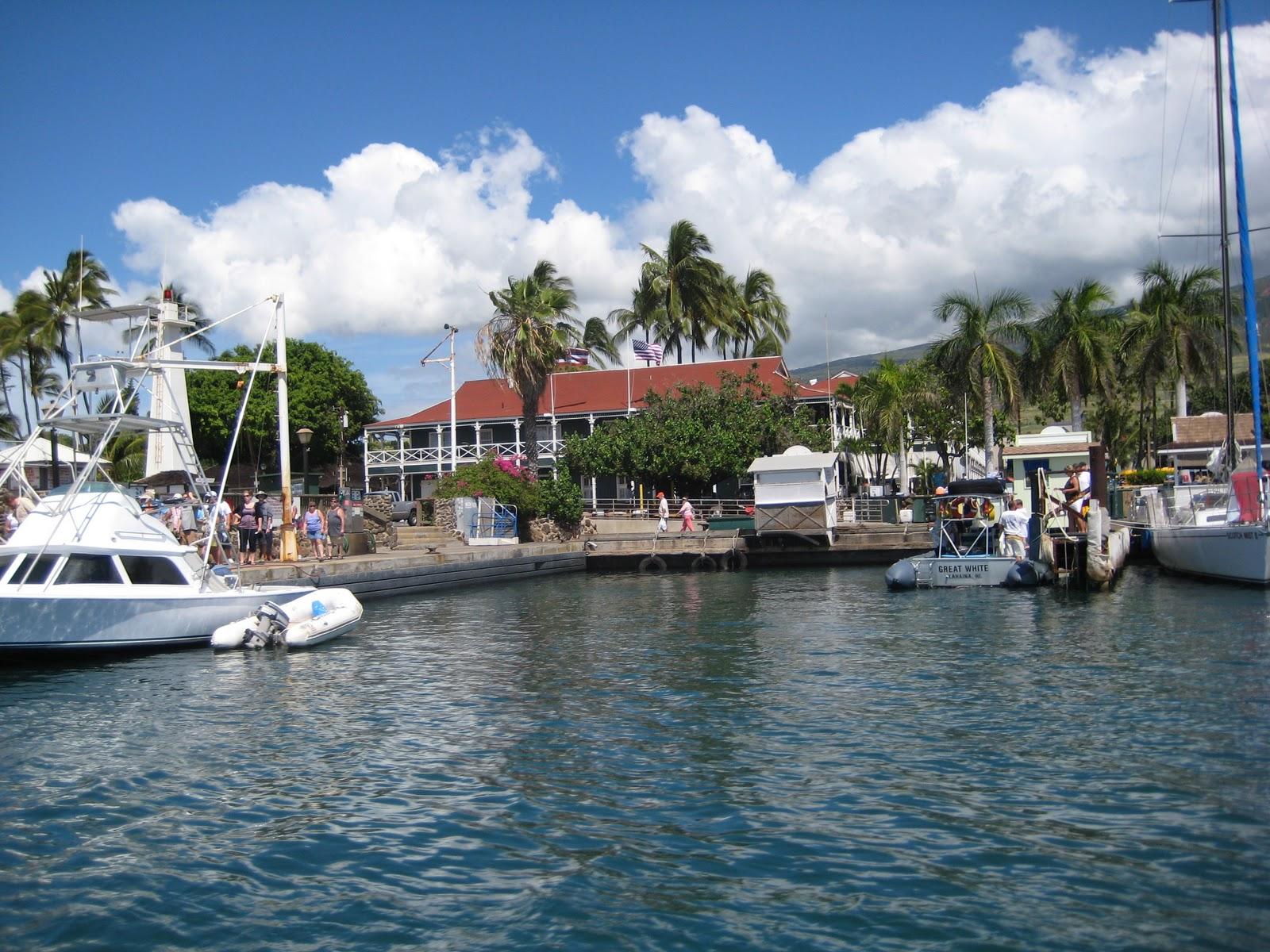 Good Restaurants In Maui Hawaii