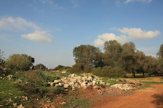 Degrado rurale: la nuova emergenza