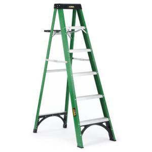 Pet News And Reviews Husky 6 Ft Fiberglass Ladder Type Ii