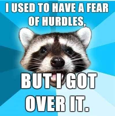 http://2.bp.blogspot.com/_0gbO9jEZC2c/S-ckGhBmaXI/AAAAAAAAA3s/jbdajCiPvCM/s1600/raccoon-hurdles.jpg