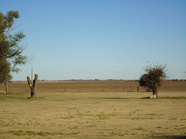 invierno en el campo, Miguel Riglos, La Pampa