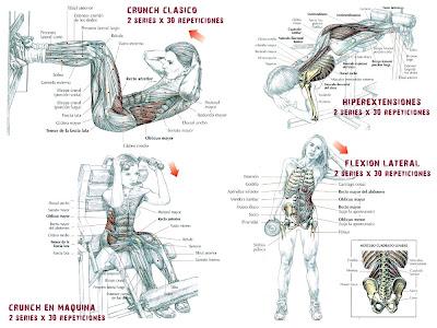 Ejercicios de abdomen en el gym